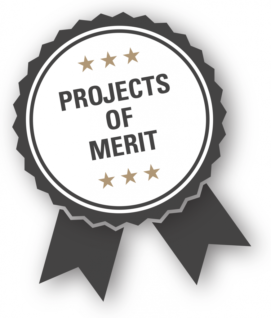 Projects of Merit ribbon