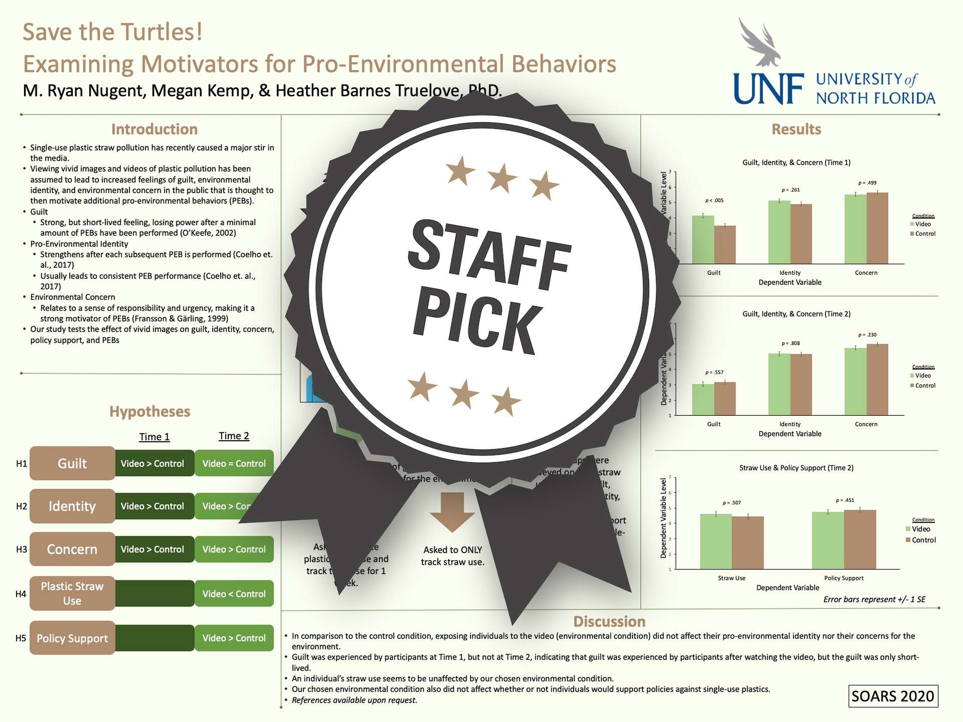 Save the Turtles! Examining Motivators for Pro-Environmental Behaviors Staff Pick poster