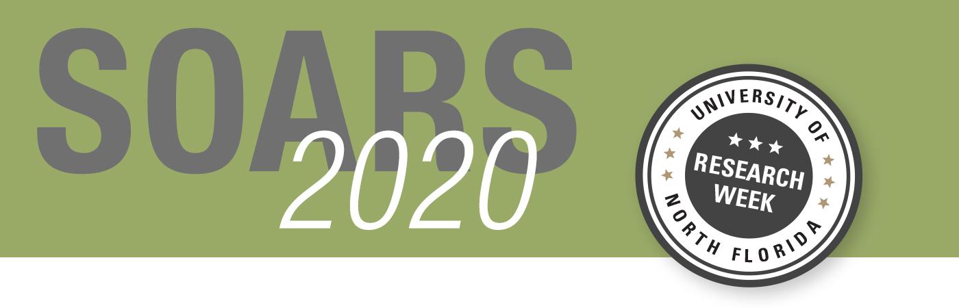 SOARS 2020 banner