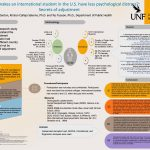 What makes an international student in the U.S. have less psychological distress?: Secrets of adjustment poster
