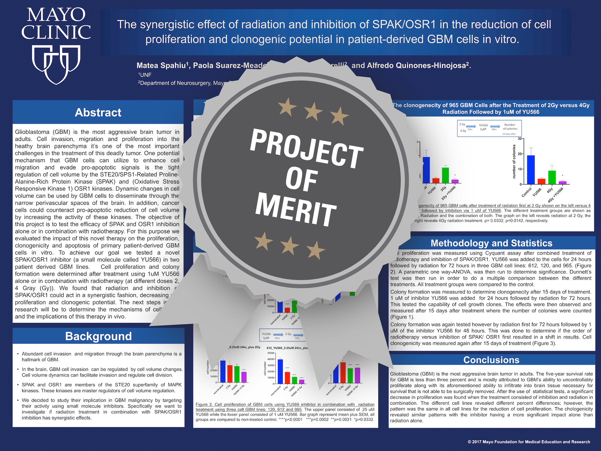 The synergistic effect of radiation and inhibition of SPAK/OSR1 in the reduction of cell proliferation and clonogenic potential in patient-derived GBM cells in vitro Project of Merit poster