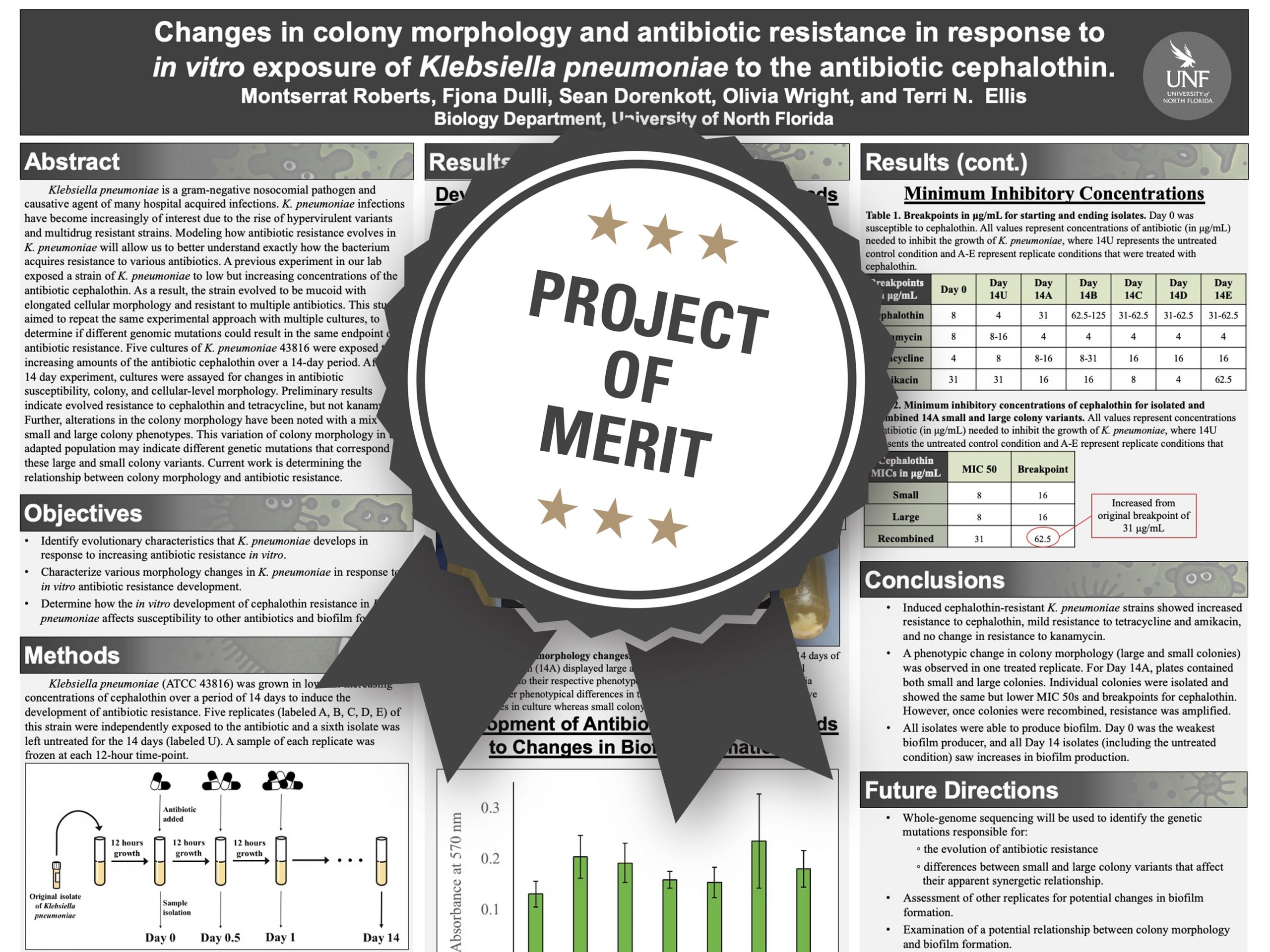 Changes in colony morphology and antibiotic resistance in response to in vitro exposure of Klebsiella pneumoniae to the antibiotic cephalothin Project of Merit poster