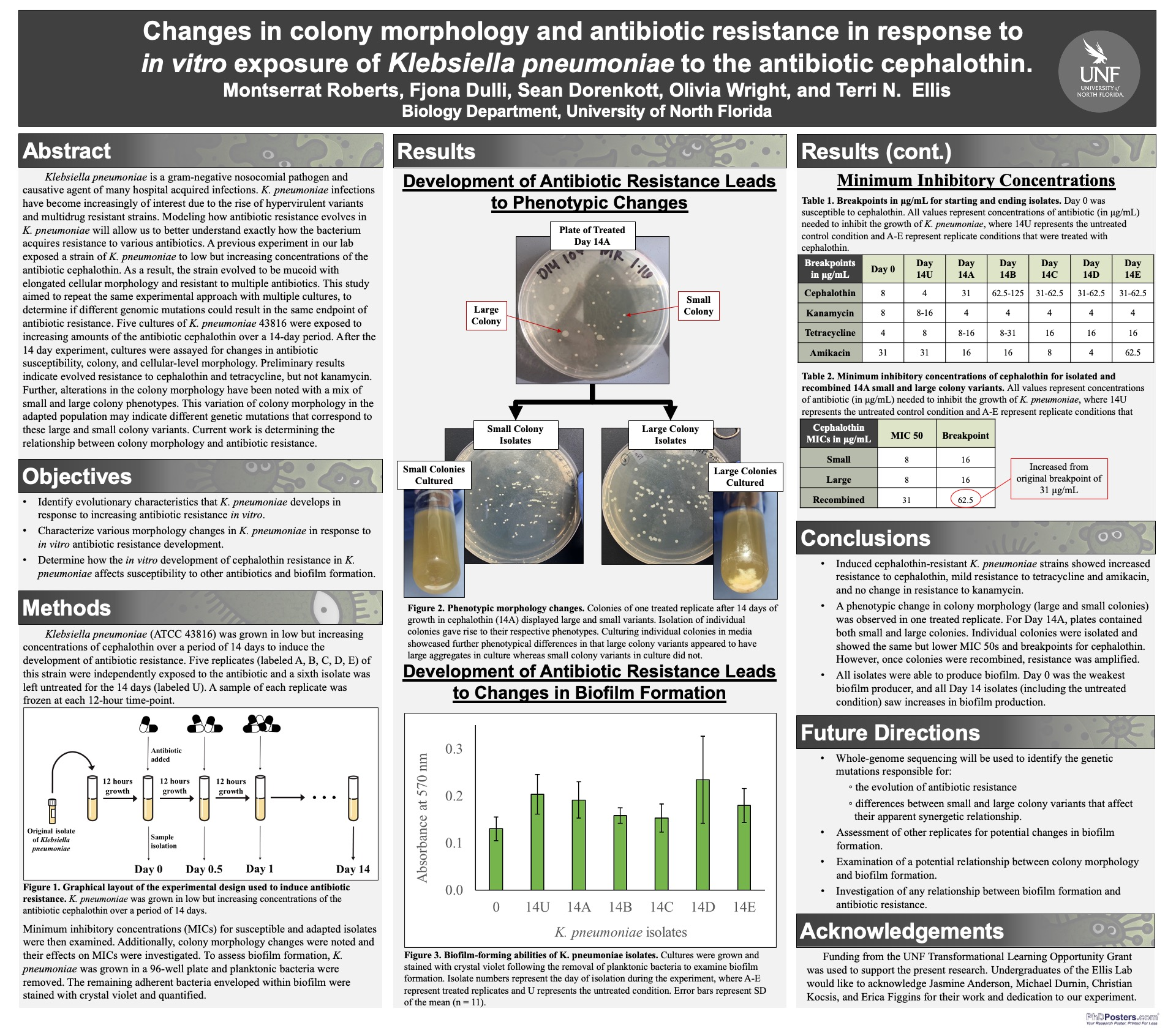 Changes in colony morphology and antibiotic resistance in response to in vitro exposure of Klebsiella pneumoniae to the antibiotic cephalothin poster
