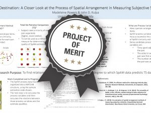 Not the Destination: A Closer Look at the Process of Spatial Arrangement in Measuring Subjective Similarity Project of Merit poster
