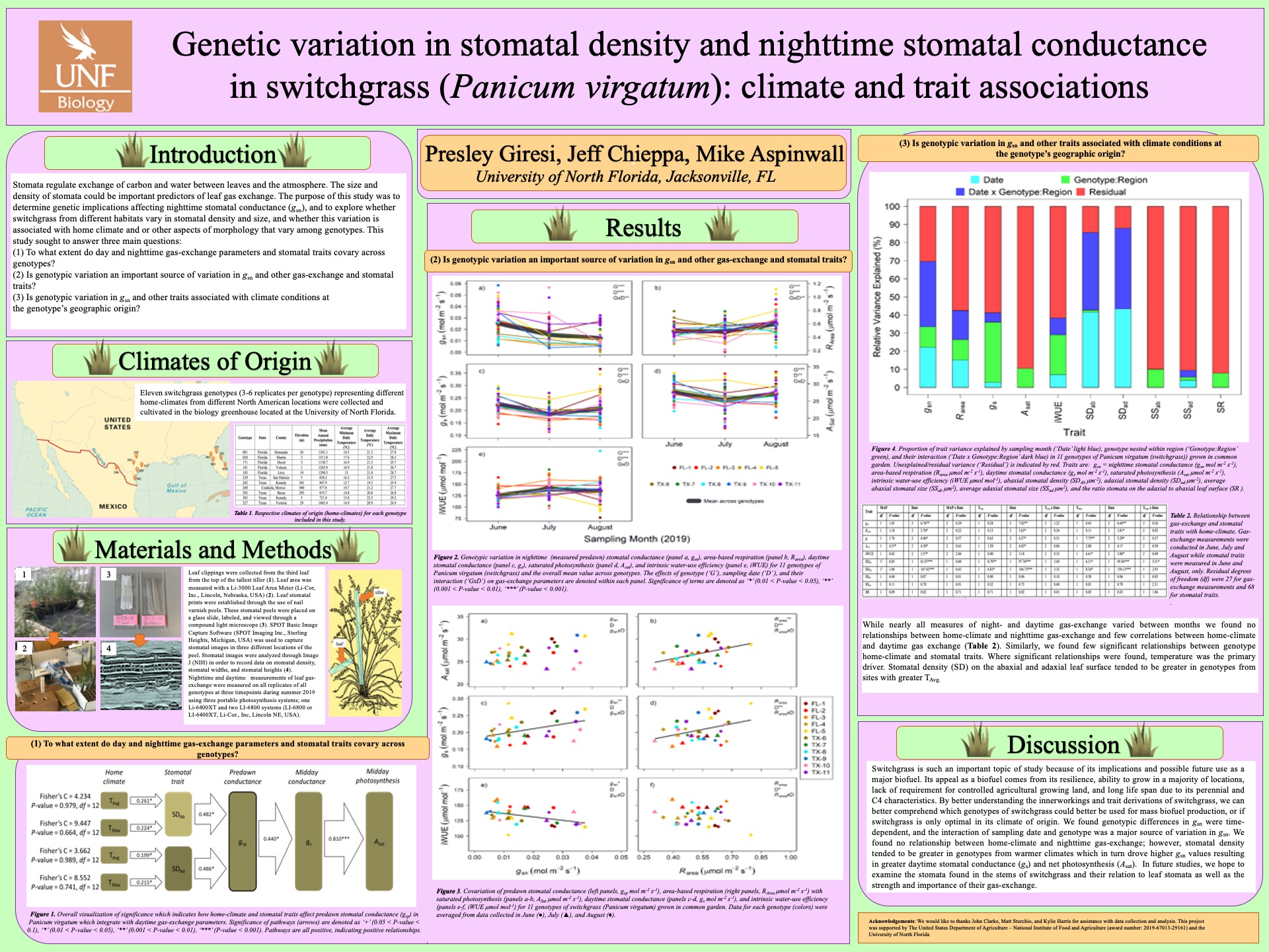 Genetic variation in stomatal density and nighttime stomatal conductance in switchgrass (Panicum virgatum): climate and trait associations poster